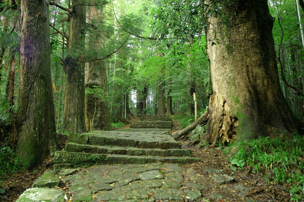 熊野古道(くまのこどう)