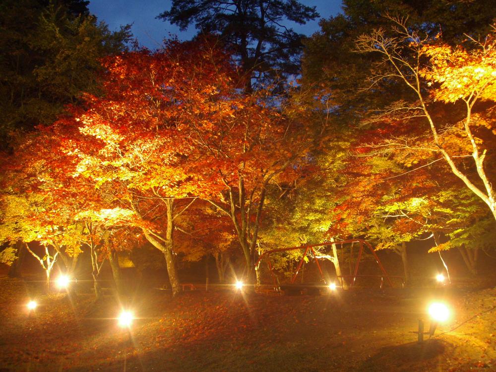 尾関山公園(おぜきやまこうえん)